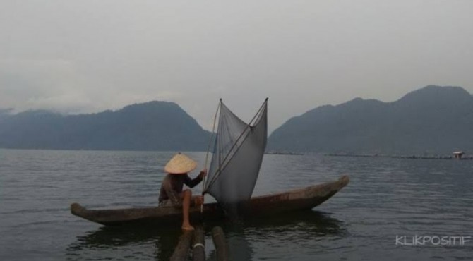 Seorang warga menangkap rinuak di Danau Maninjau