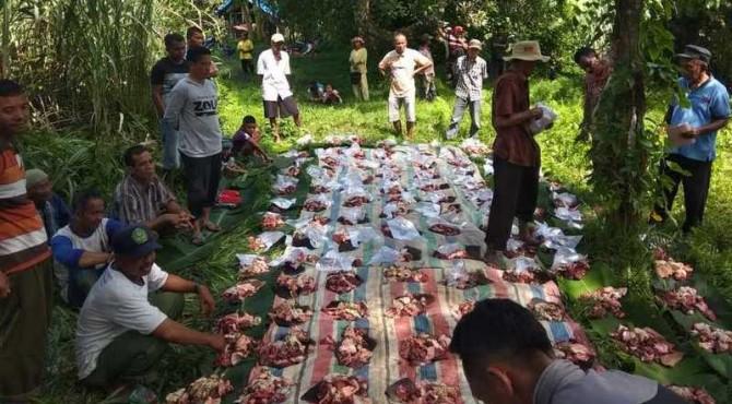 Daging kerbau akan dibagikan untuk warga nagari dan perantau di Jorong Tanjung Air, Kenagarian Lubuak Layang, Kecamatan Rao Selatan, Pasaman