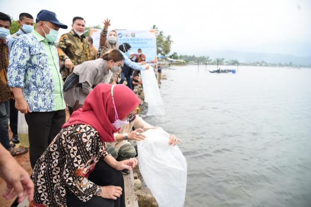 Wakil Ketua Komisi IV Dewan Perwakilan Rakyat Republik Indonesia (DPR RI), Anggia Erma Rini melepaskan bibit ikan bilih di Danau Singkarak