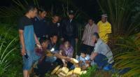 SatRes Narkoba Polres Pasaman Barat saat menyita barang bukti dari sebuah kebun sawit di Nagari Ujung Gading bersama pelaku