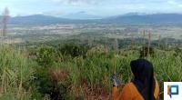 Panorama Tabek Gadang