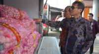 Gubernur Sumbar Irwan Prayitno saat meninjau bawang putih di TTIC