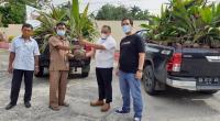 Penyerahan bantuan bibit pohon kelapa dalam dari PT Semen Padang diserahkan Staf Health Safety Environment (HSE) PT Semen Padang Alif Yuza  kepada Plt Kabid Perkebunan Dinas Pertanian Kabupaten Dharmasraya Ijhon, Senin (18/10/2021).