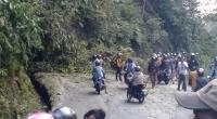 Pohon tumbang menutupi jalan di kawasan Silaing Kariang Padang Panjang