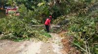 Tim Reaksi Cepat (TRC) Semen Padang kirimkan bantuan logistik untuk korban banjir di Kecamatan Tanjung Gadang, Kabupaten Sijunjung.