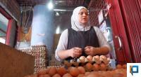 Pedagang telur di Pasar Raya Padang sedang menyusun telur ayam ras yang ia jual