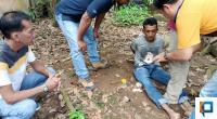 Tersangka FAS (33 tahun) saat dibekuk Tim Gagak Hitam Polres Payakumbuh.