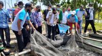 Wawako Padang Hendri Septa melakukan panen perdana ikan nila UEP Karta Jaya Tarantang.