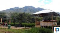 Lassy Dairy Farm di Lasi Agam